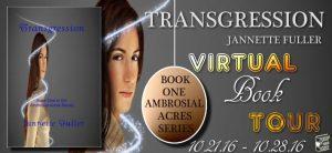 transgression-banner