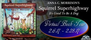 squirrel-superhighway-banner