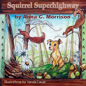 squirrel-superhighway
