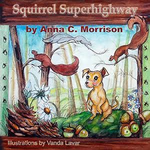 squirrel-superhighway